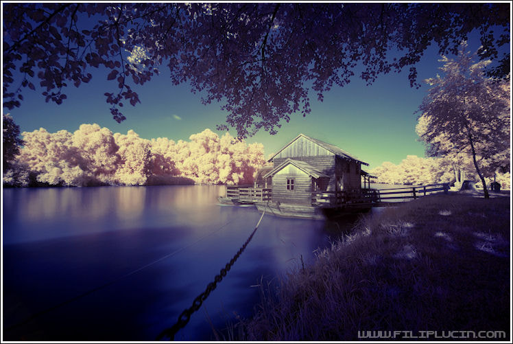 Photograph Infra red world by Filip Lučin on 500px