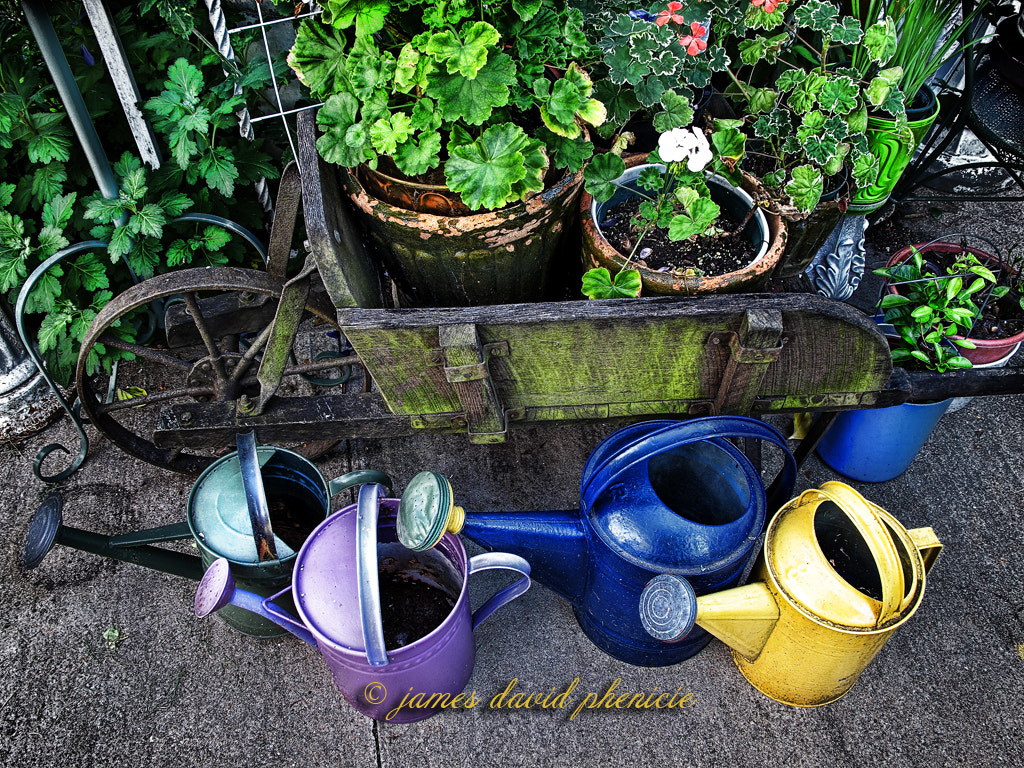 Photograph In the gardern:  Watering Cans by James David Phenicie on 500px