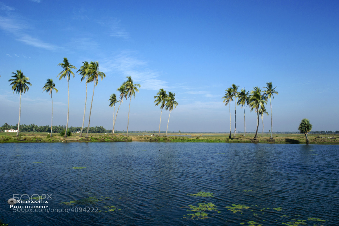 Photograph The Blue World by sitikantha sarangi on 500px
