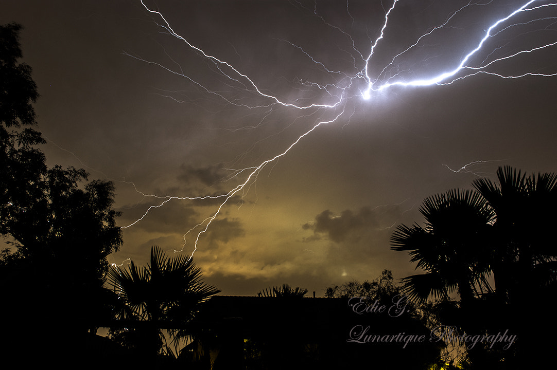 Photograph Monsoon Lightning 2 by Edie G. on 500px