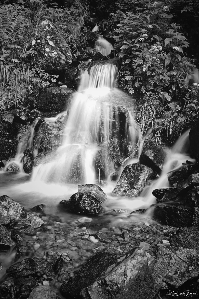 Photograph Cascade by Stéphane Picot on 500px