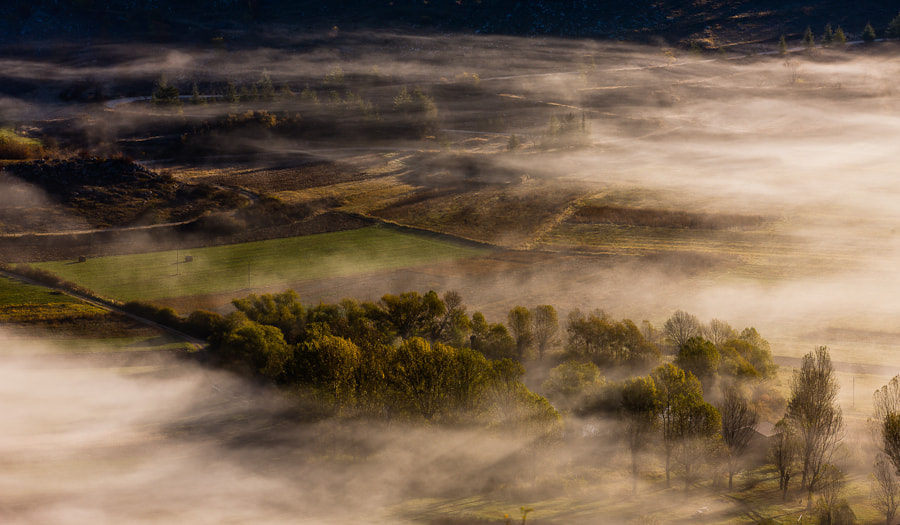 Photograph Landscape in Fog by Hans Kruse on 500px