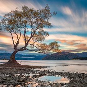 Autumn in Wanaka by Danny Xeero on 500px.com