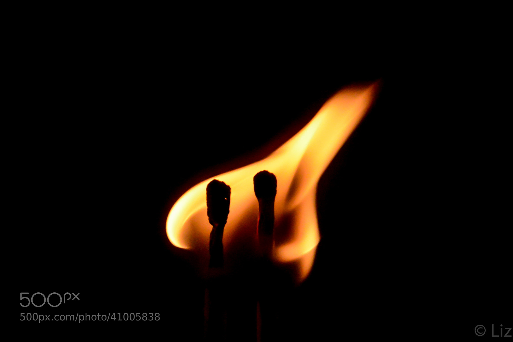 Photograph Love flame by lizfortie on 500px