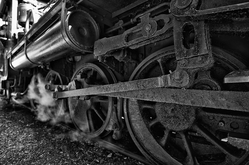 Photograph The Wheels On The Train..... by Margaret Hamwood on 500px