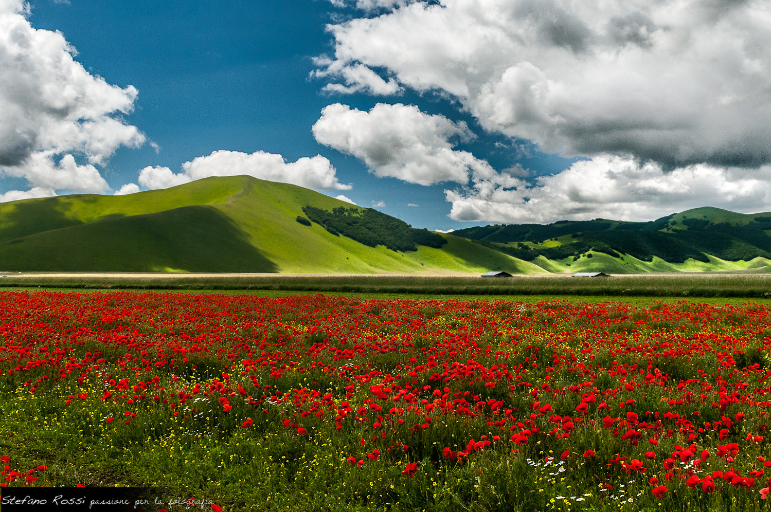 Photograph Red lake by Stefano Rossi on 500px