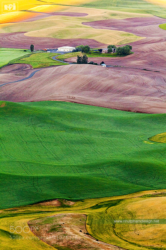 Photograph Palouse in Close Up! by Nhut Pham on 500px