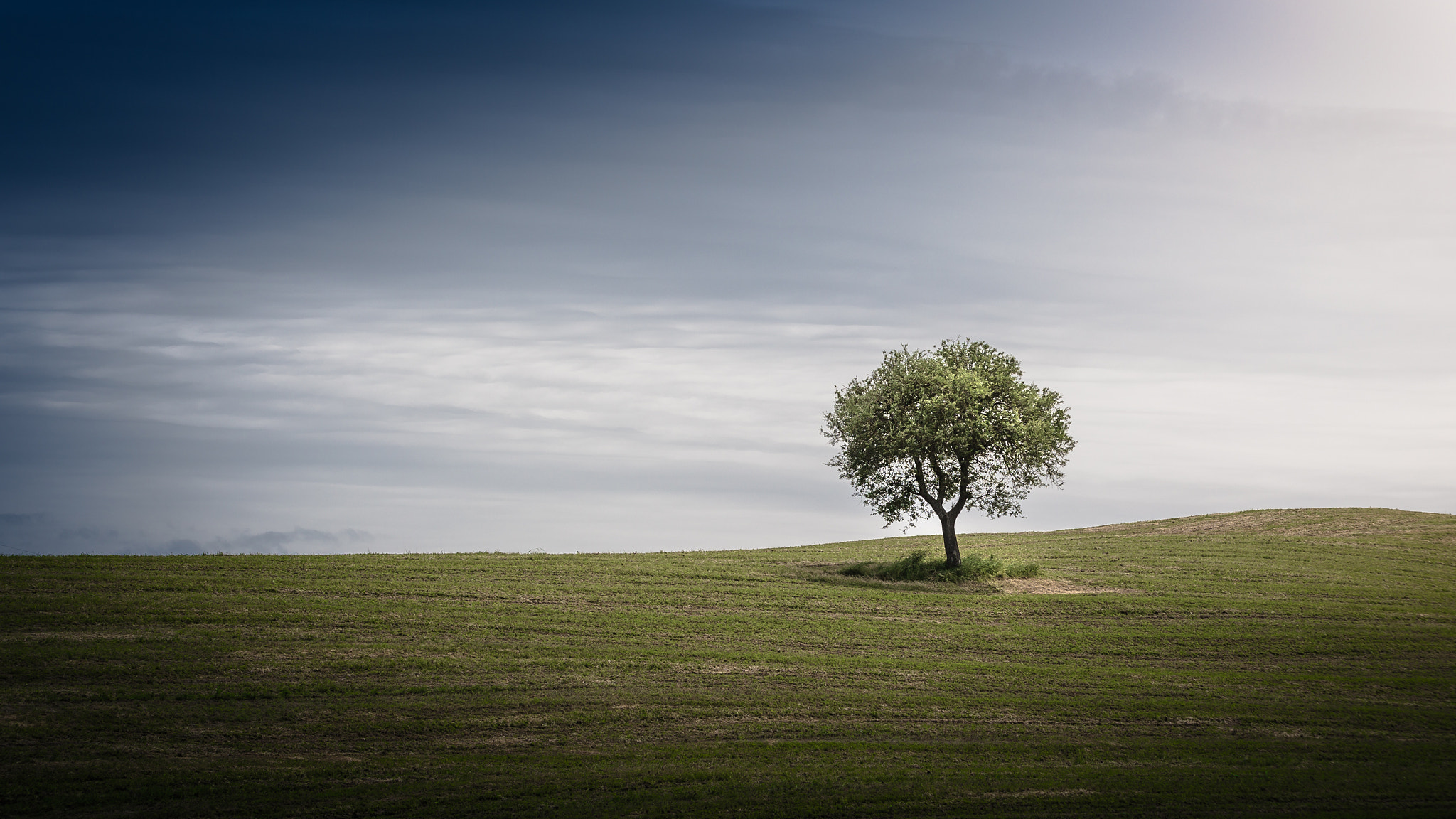 Photograph Lonely by Torsten Muehlbacher on 500px