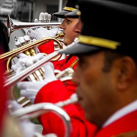 Trumpeters, 2013
