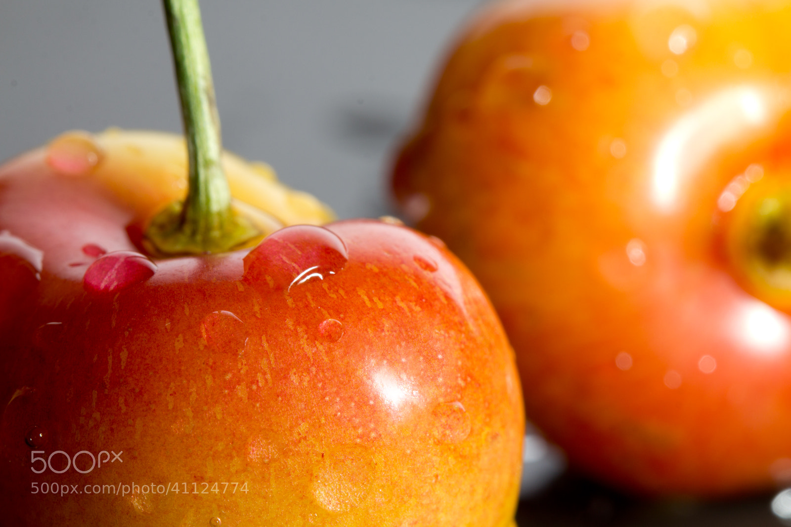 Photograph Rainier Cherries by Ivanka J. Kostial on 500px