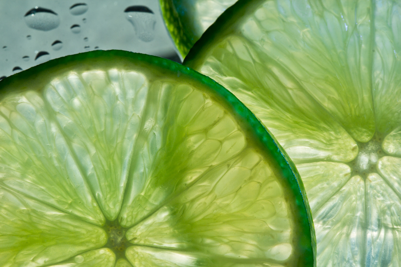 Photograph Simply Lime. by Ivanka J. Kostial on 500px