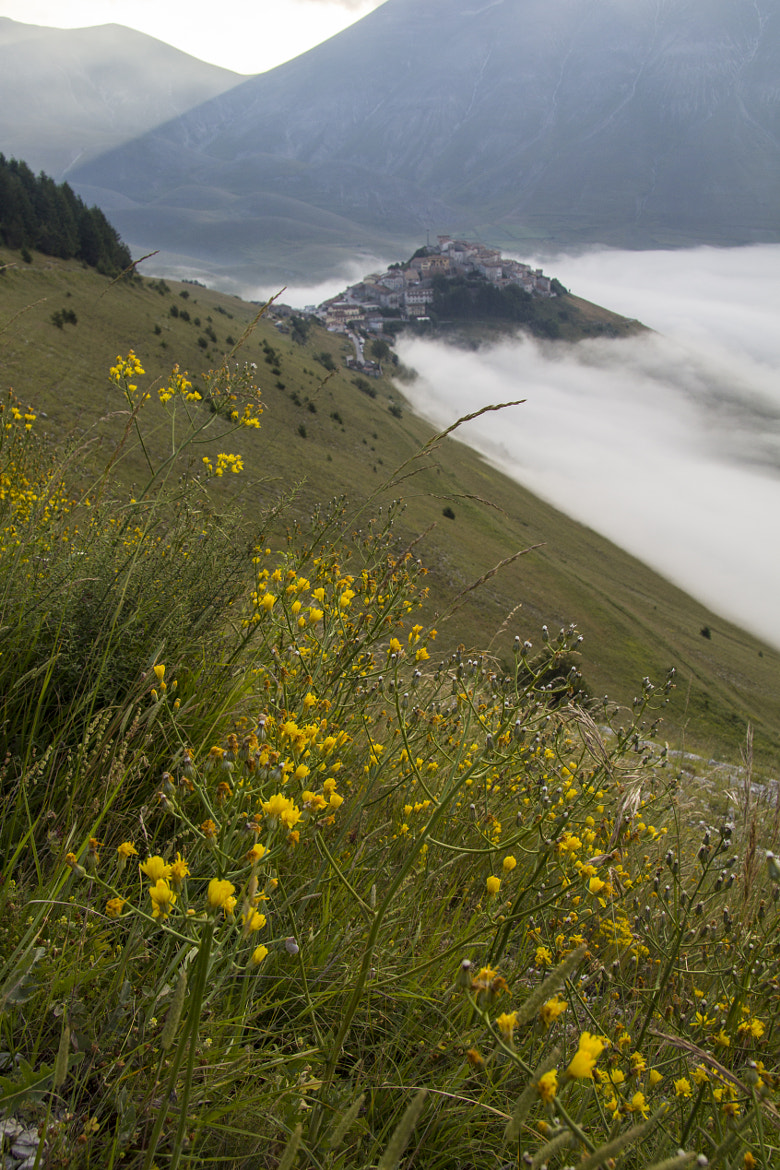 Photograph Castelluccio di Norcia on early morning by Elisa Bistocchi on 500px