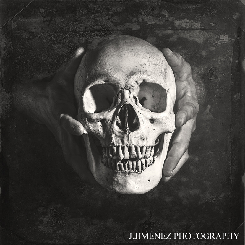 Photograph Skull I by Jorge Jimenez on 500px