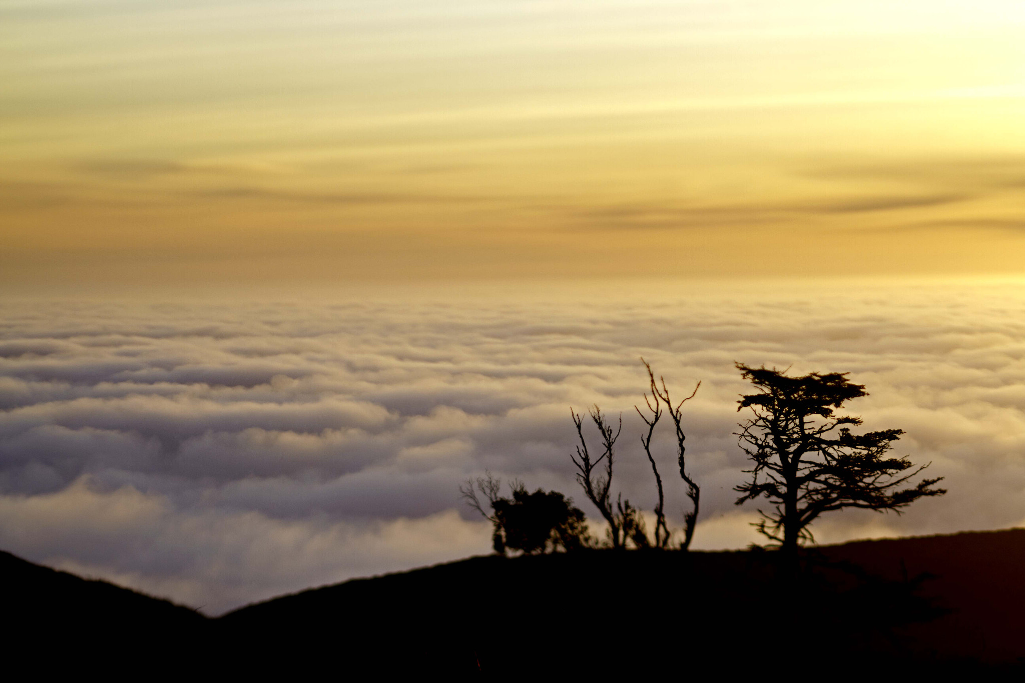 Photograph Sunset Point Reyes by Michael Young on 500px