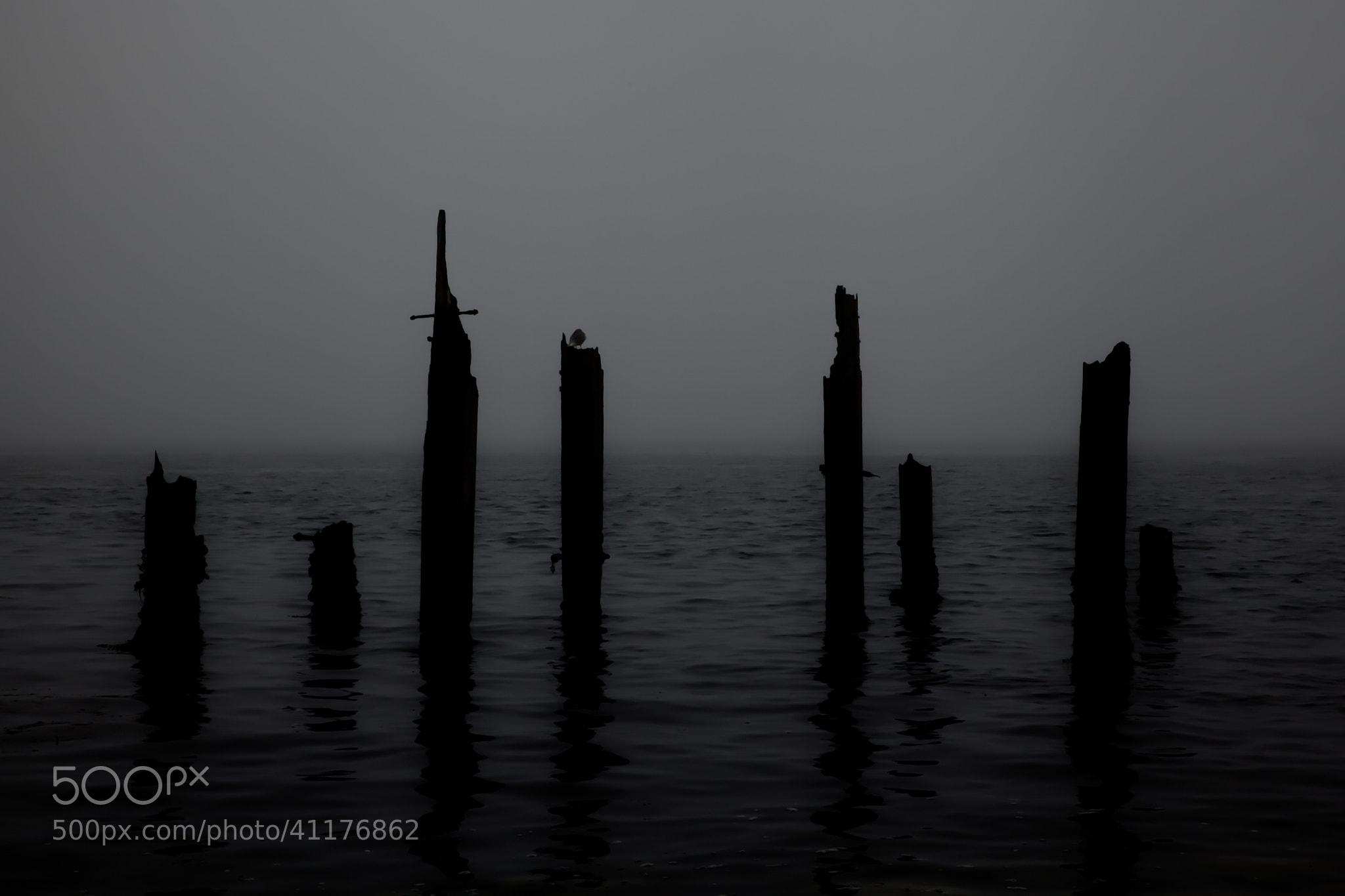 Photograph Broken silence by Graeme MacDonald on 500px