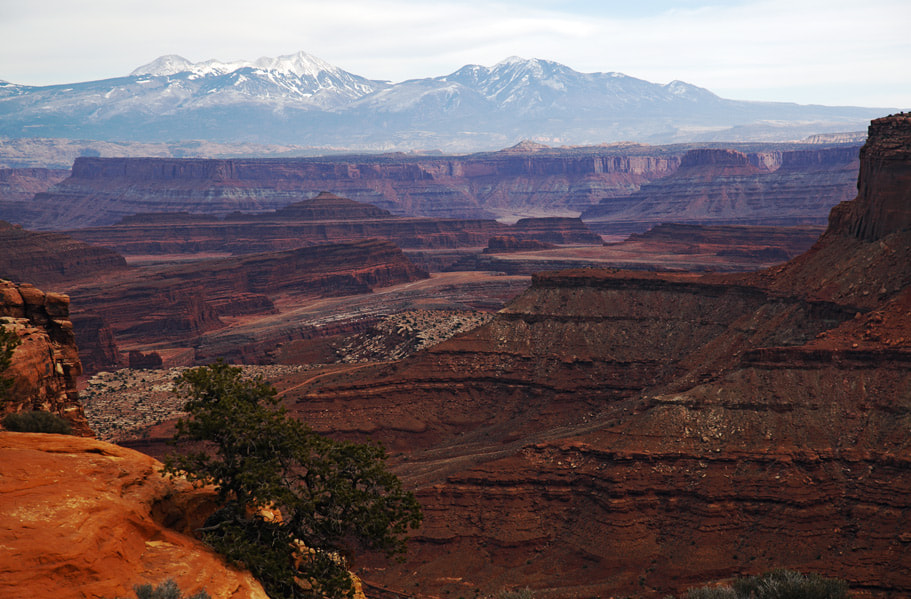 Photograph Canyonlands by Olga  Zvereva on 500px
