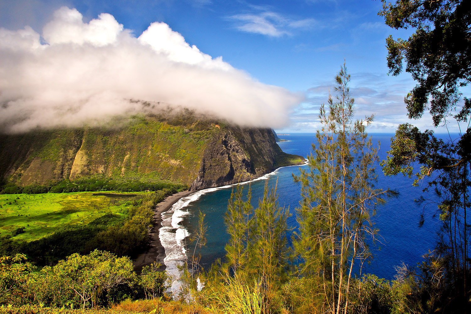 Photograph Waipio Valley by Mark Rogers on 500px