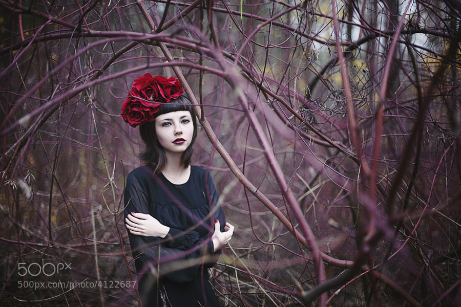 Photograph Cage by Polina Brzhezinskaya on 500px