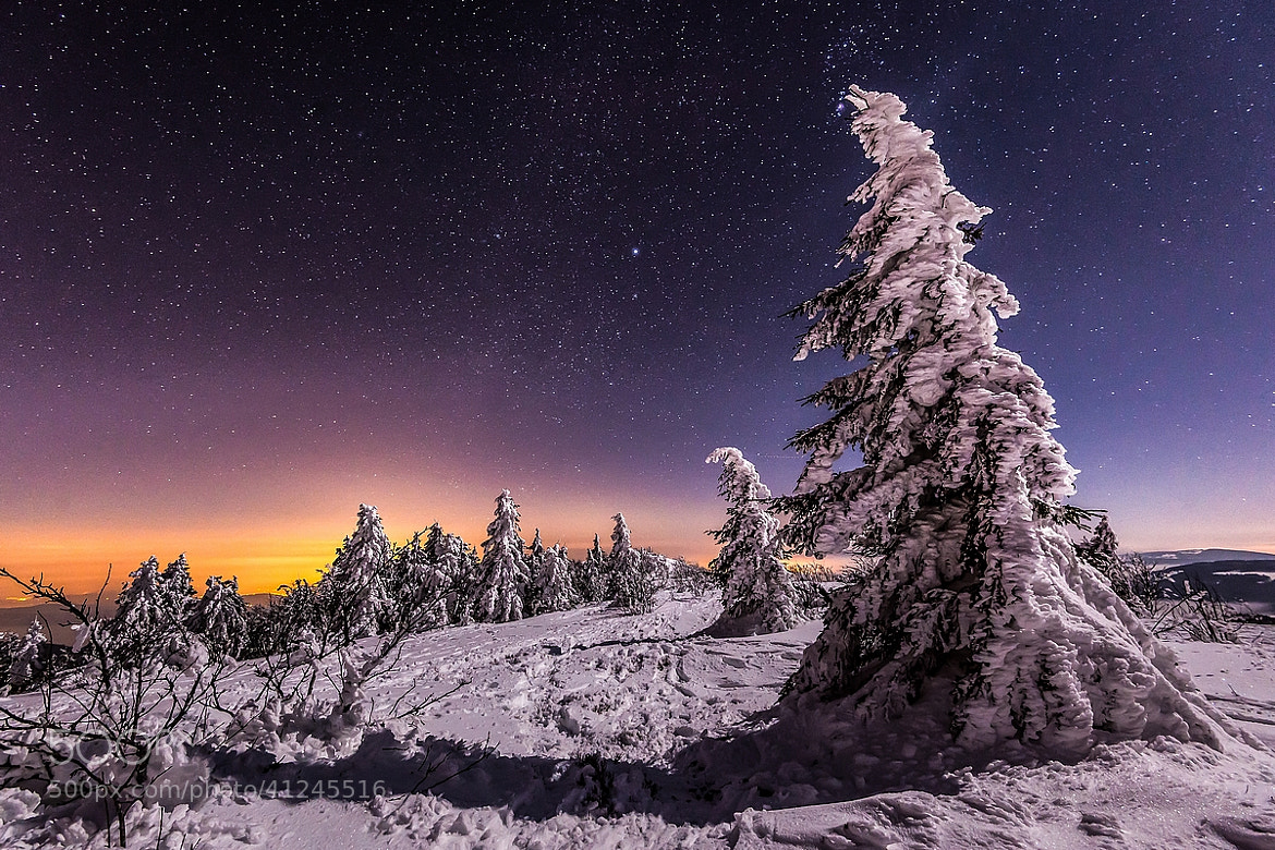 winter night starscape france