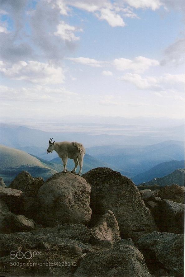 Photograph rockies by Bradley Meyer on 500px