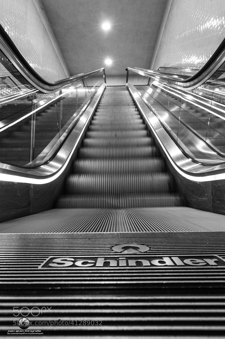 Photograph Shindler by Joao Alves on 500px