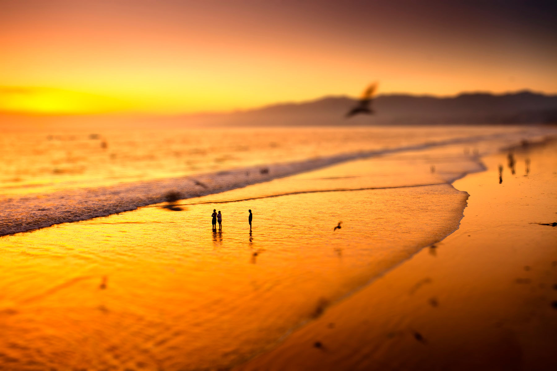 Photograph Beach by Pietro Canali on 500px
