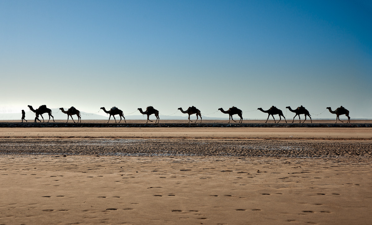 Photograph Caravan by Thierry Hennet on 500px