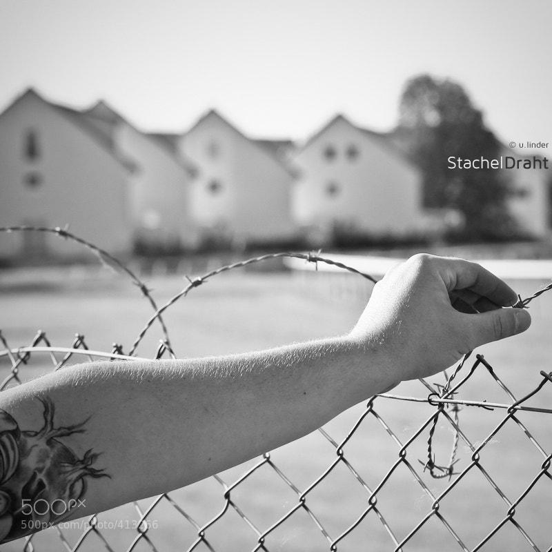 Photograph Stacheldraht by u. linder on 500px