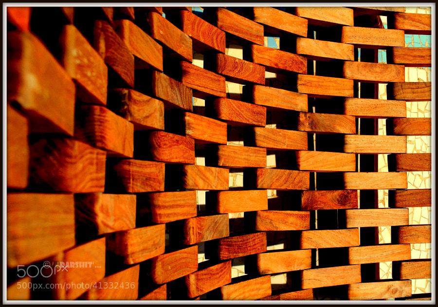Wood Architecture by Itz Darshit (બગીચાનો માળી) on 500px.com