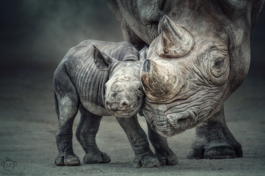 Photograph Mother-child bond by Manuela Kulpa on 500px