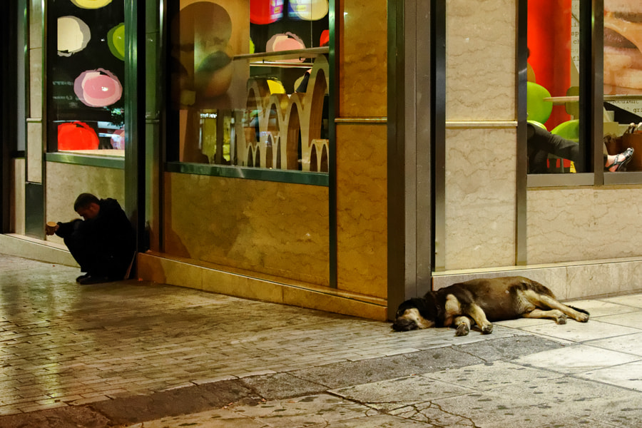 Photograph Of dogs and men by Stamatis Gr on 500px