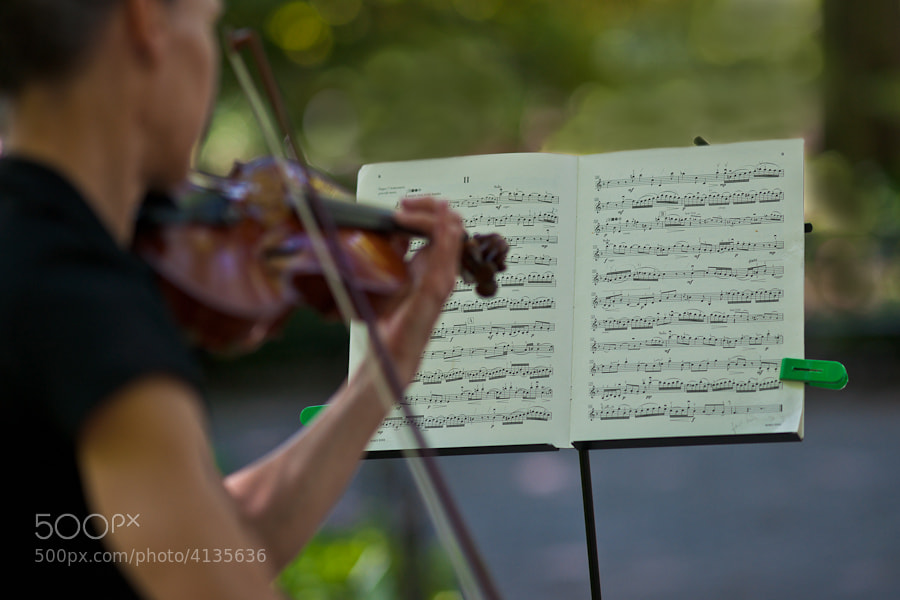 A woman playing the violin on a Saturday morning in Central Park