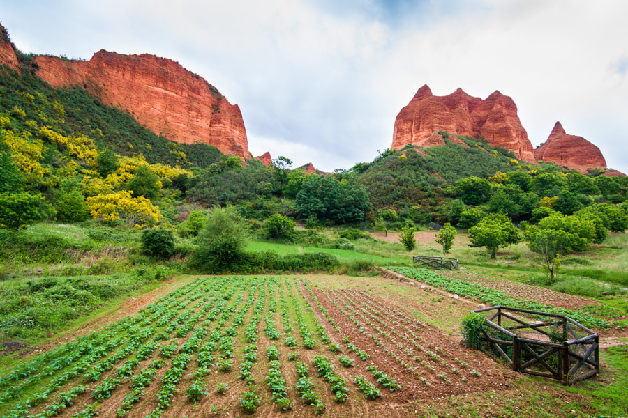 Photograph Médulas by Jose Agudo on 500px