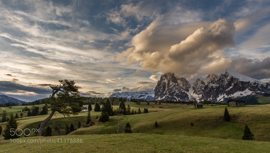 Photograph Early morning in the Dolomites by Hans Kruse on 500px