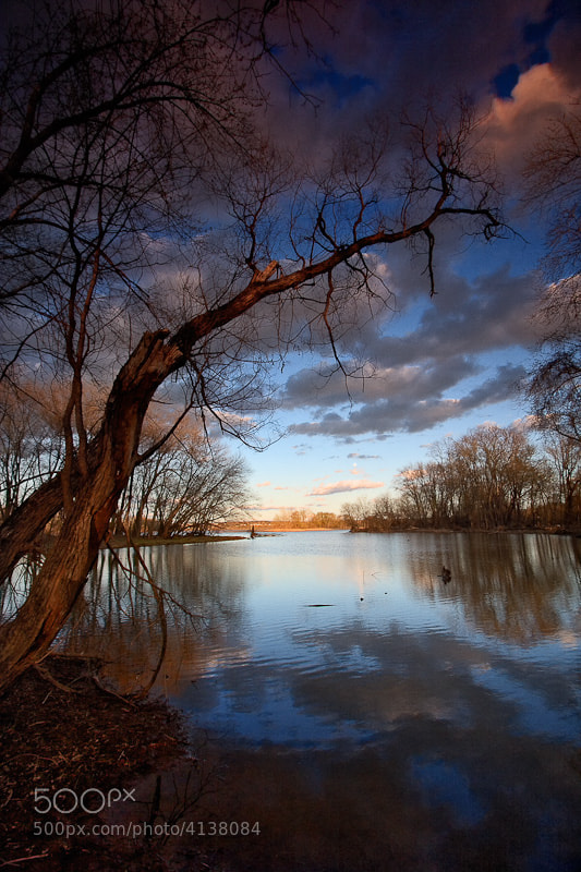 Photograph Blue Bayou by Neil Shapiro on 500px