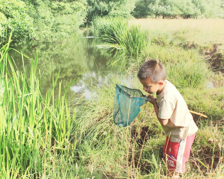 Minnow Fishing