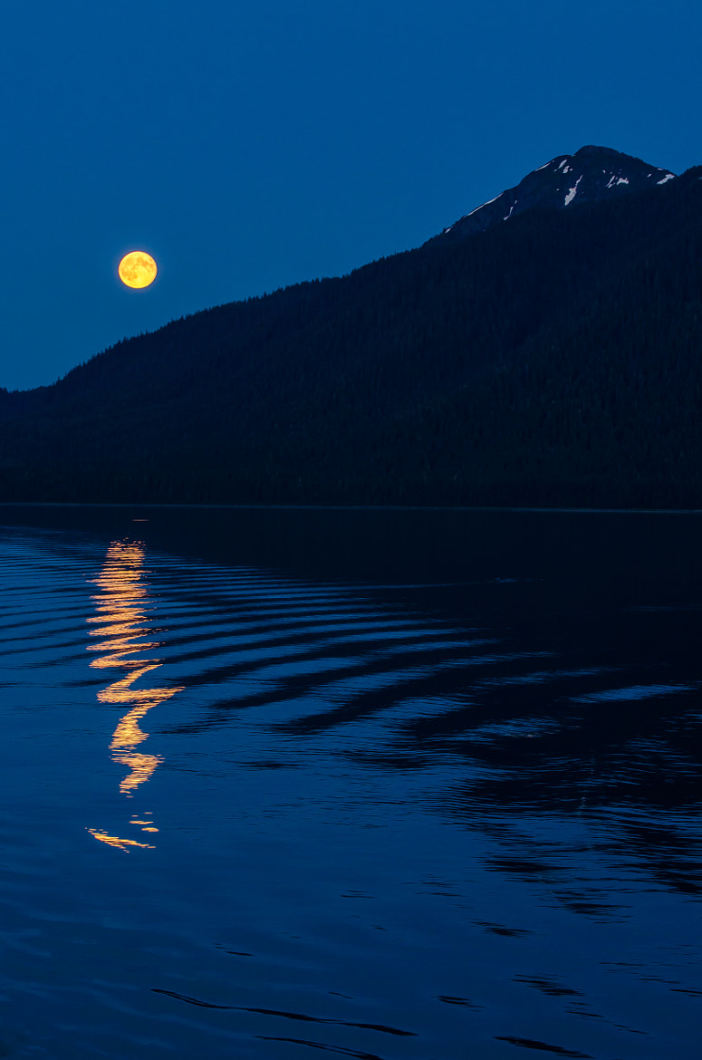 Photograph Moon on the Ocean by David Owen on 500px