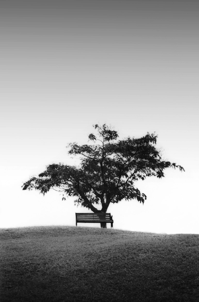 Photograph Lone Bench by Shahrie Saleh on 500px