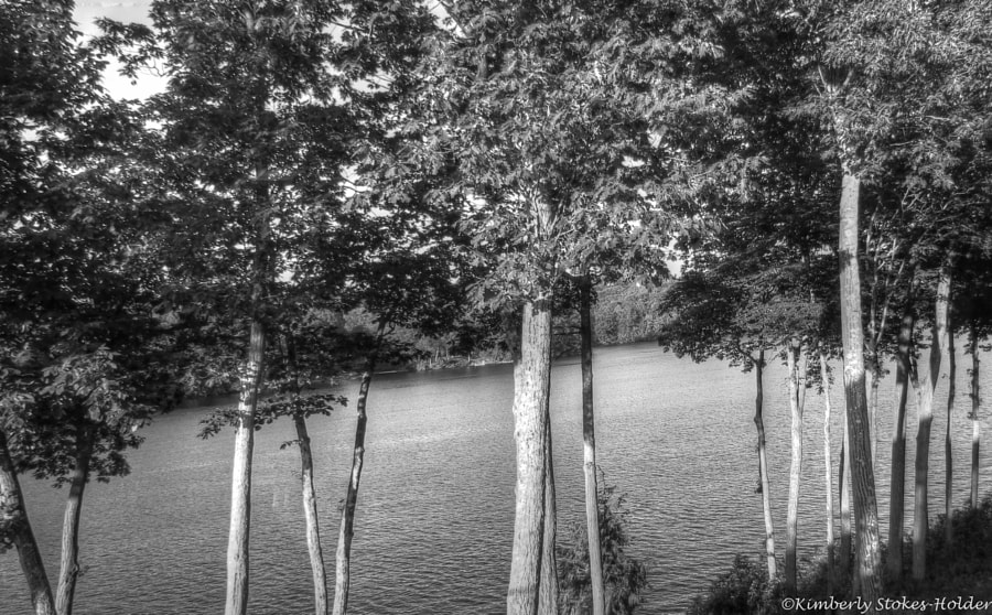 Lake Zoar in BW