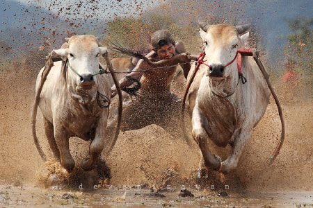 Hard race.... by dewan irawan