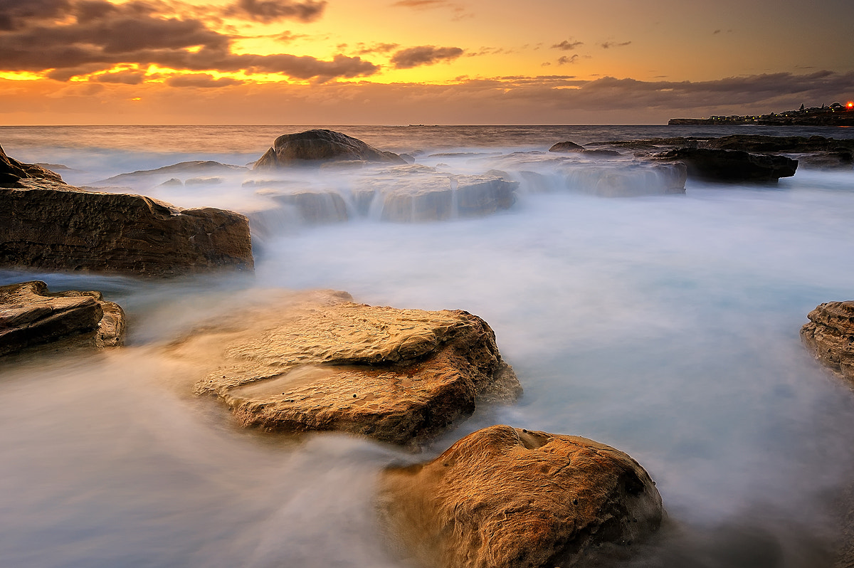 Photograph Golden Reef by Aonlawon : on 500px