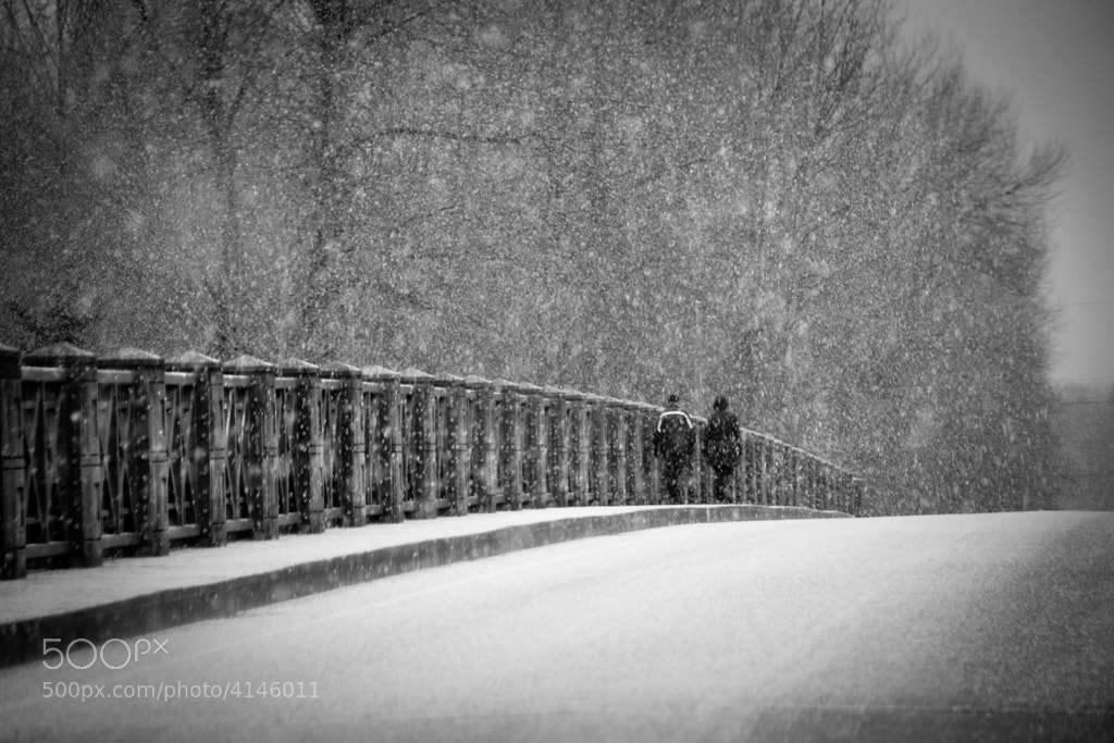 Photograph ...and out of nowhere it began to snow by Sharon  Wish on 500px