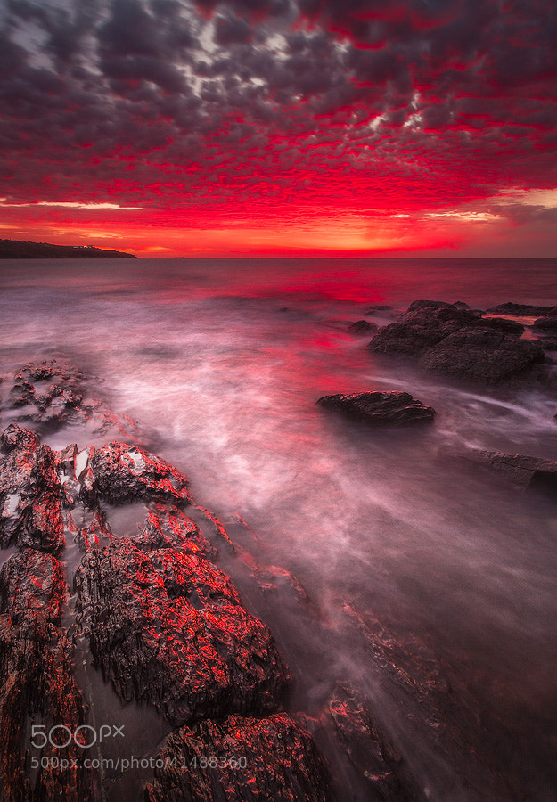 Photograph Bathed In Blood II by Dylan Gehlken on 500px