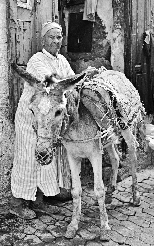 Photograph Transportation in Fez by Csilla Zelko on 500px