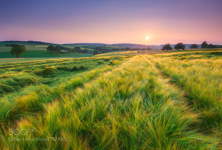 Photograph Kraichgau Morning by Michael  Breitung on 500px