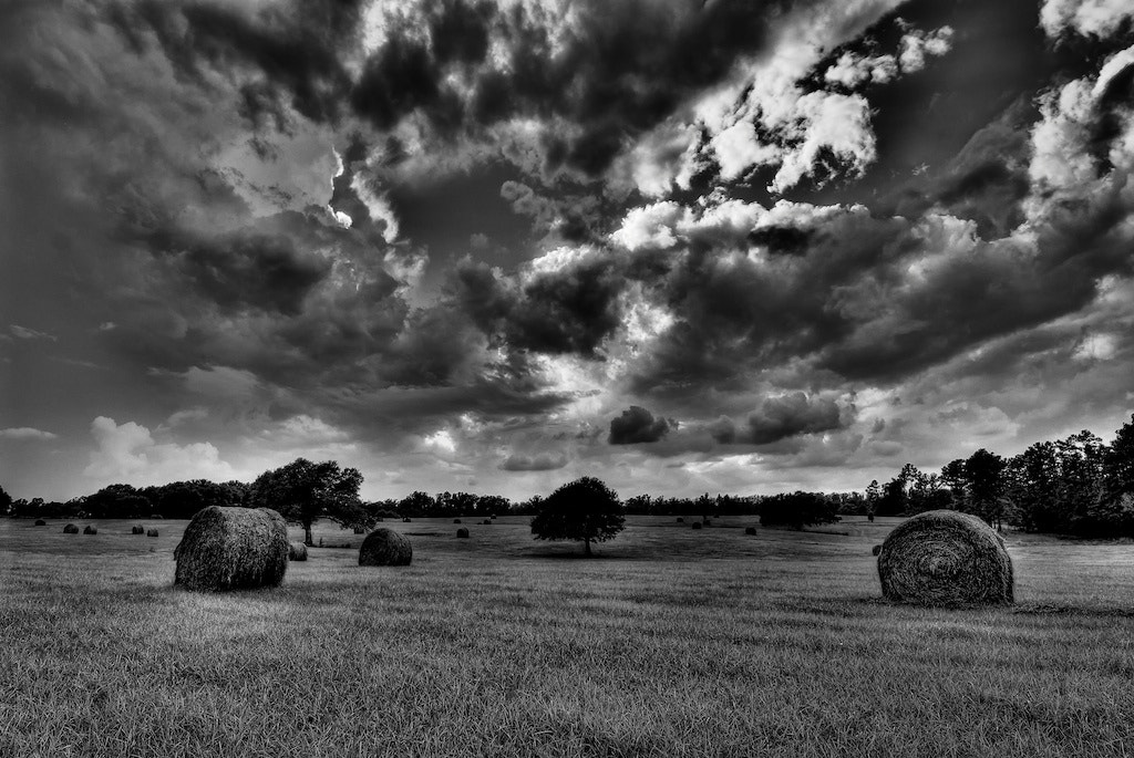 Photograph Hay Field by Chris Fryou on 500px