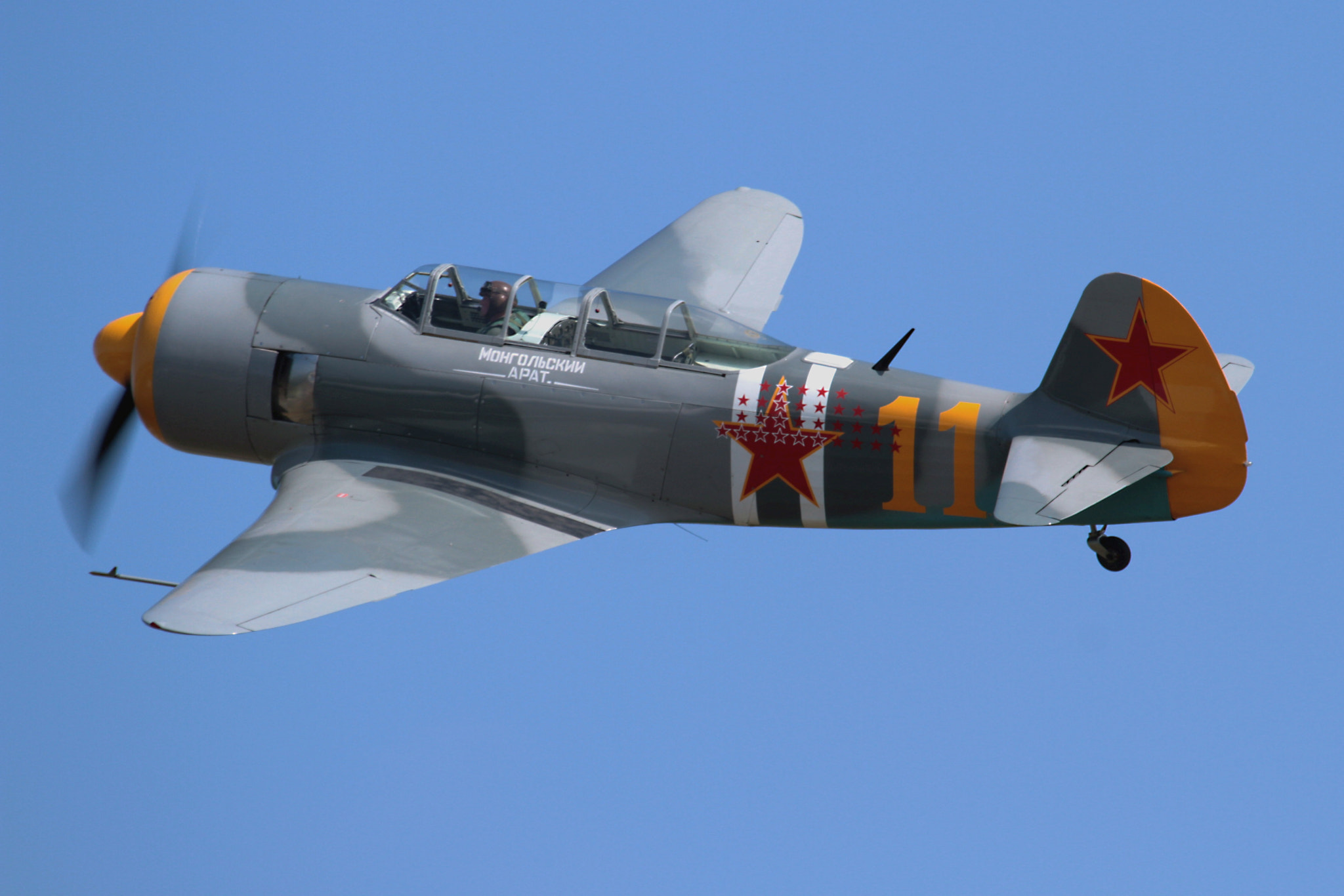 Photograph Yak 11 by Ian Porter on 500px