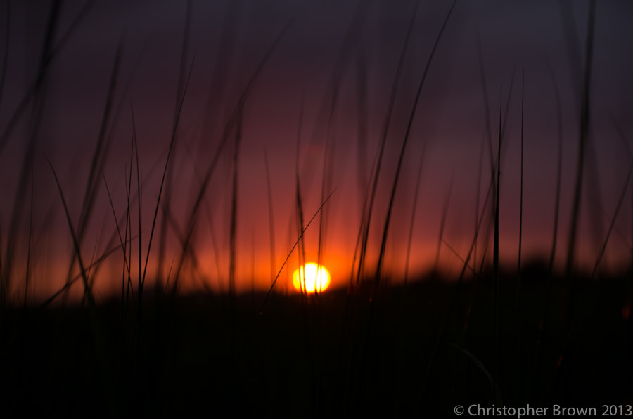 Photograph Sunset in the Marsh by Chris B on 500px