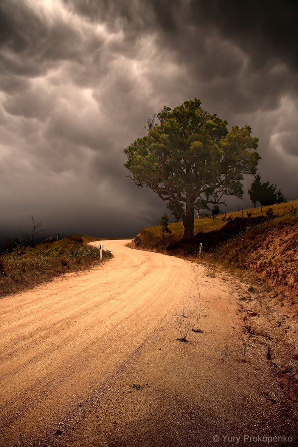 Photograph Country Road by Yury Prokopenko on 500px