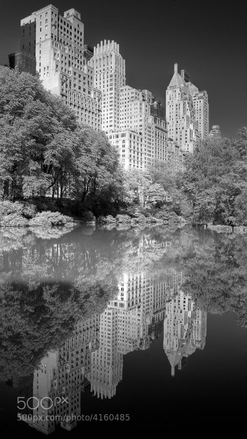 Image taken at The Pond in Central Park